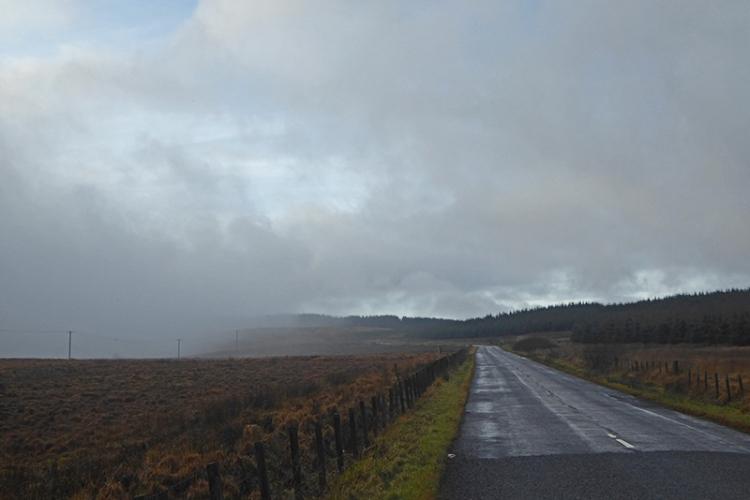 Callister mist