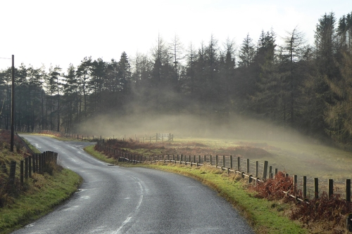 mist on Wauchope road