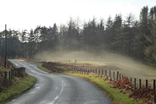 mist on Wauchope road