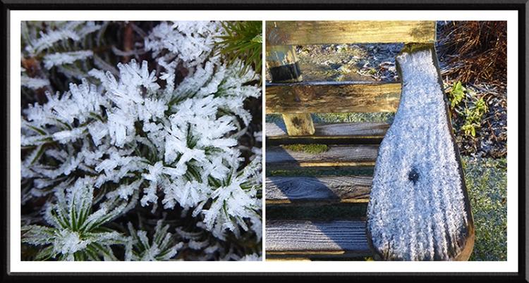 garden ice