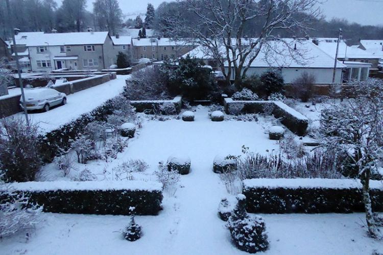 snowy garden 2017