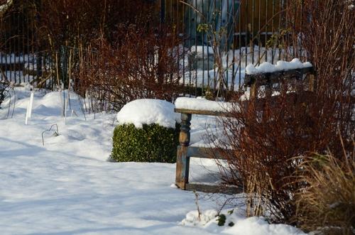 sun in snow garden