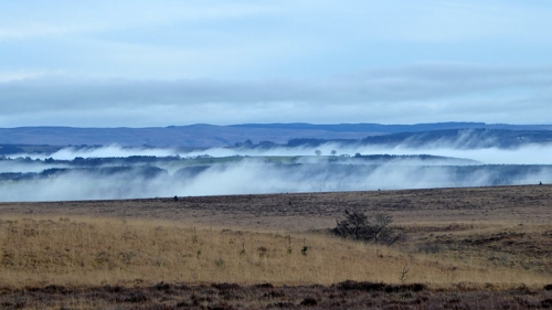 Mist in Esk valley
