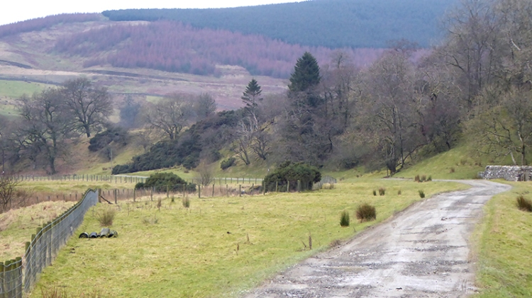 Arisgill valley cleuchfoot
