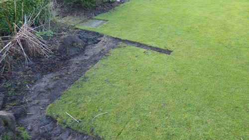 lawn imptovements