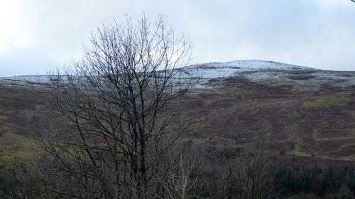 snow Timpen