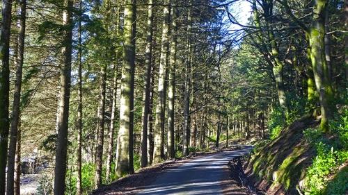 Near Holmhead