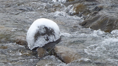 ice in Ewes
