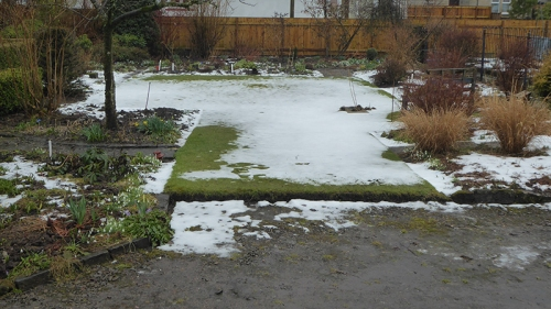 lawn with snow melting