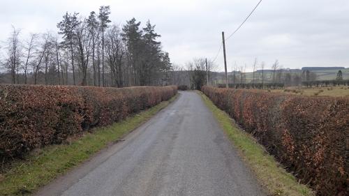 Near Gilnockie station