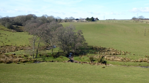 view near chapelknowe