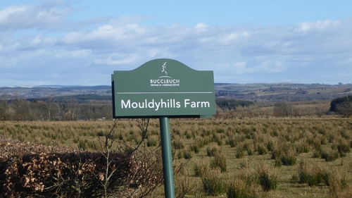 Mouldyhills