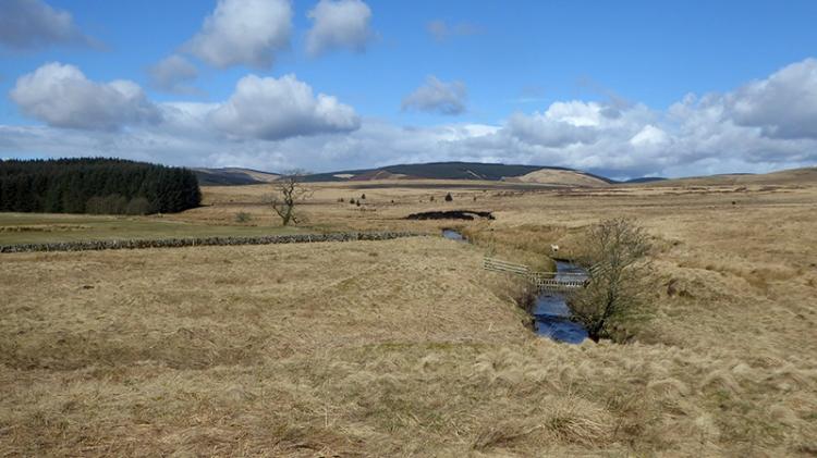 view at Bigholms