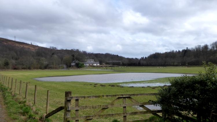 puddle at Murtholm