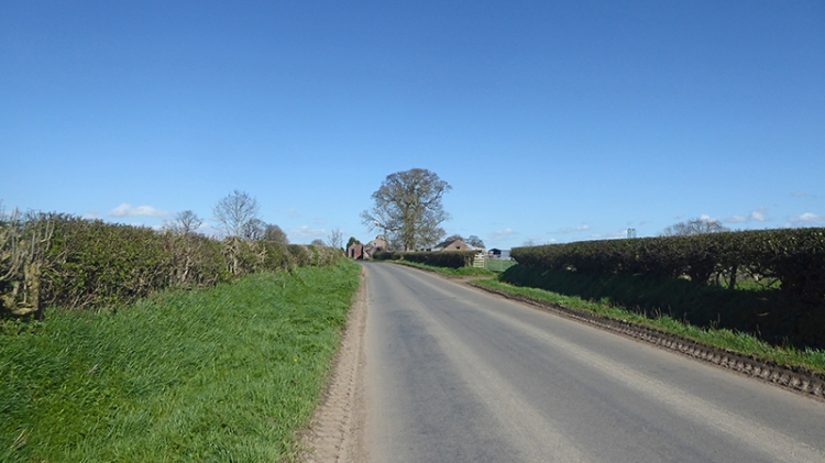 Road near Scaleby