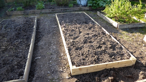new veg bed