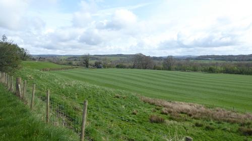 field near Canonbie