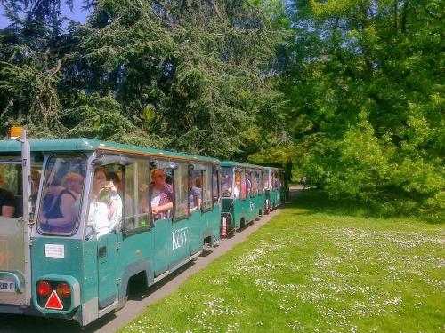 Kew Gardens 6 May 2018 006