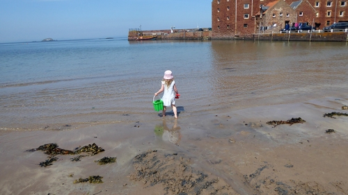 matilda at the seaside (3)
