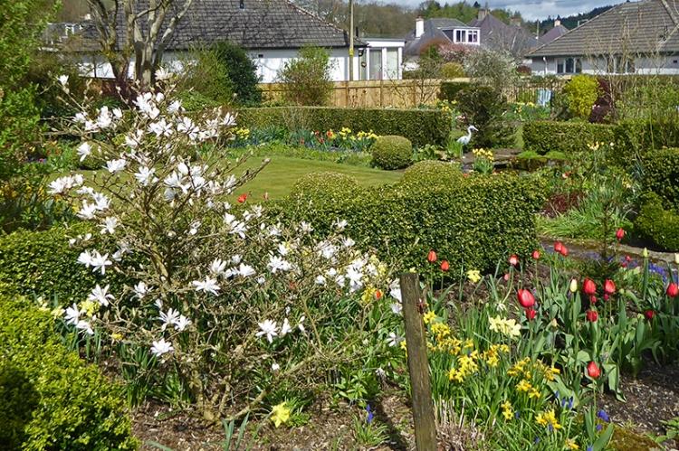 magnolia garden from gate