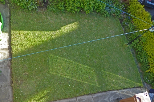 Al's lawn