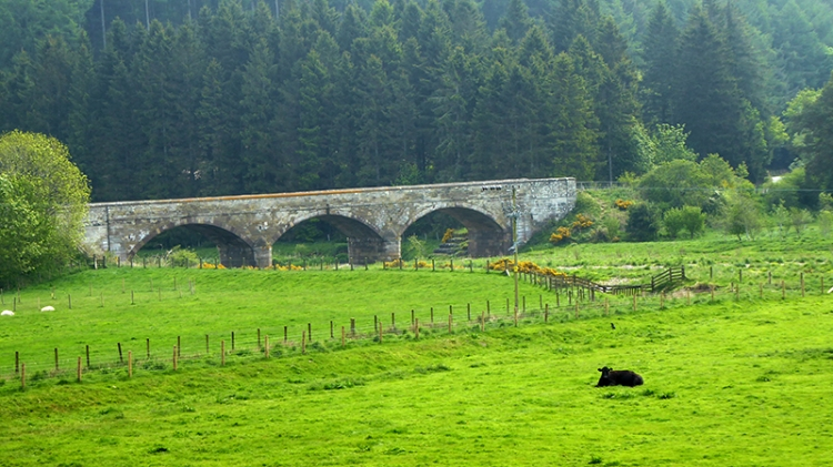 Lammermuir bridge