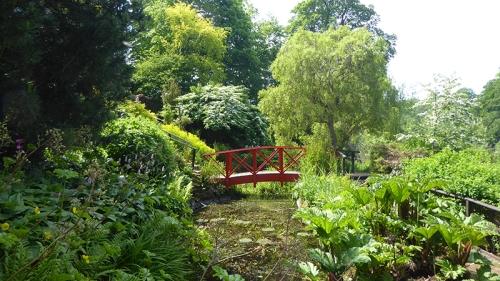 Teviot water garden