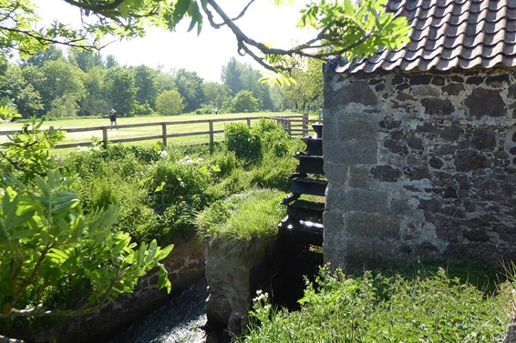 Preston mill (7)