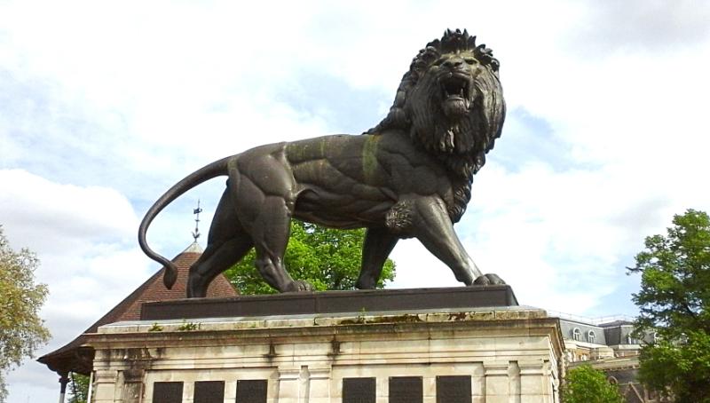 reading lion