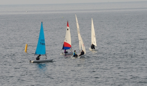 sailing boats NB