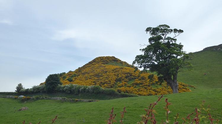 view near athelstanford (2)