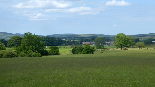 fields from Gair road