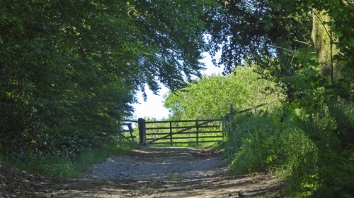 gate onto hill