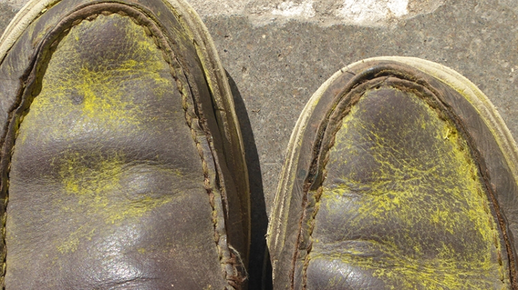 shoes with buttercup dust