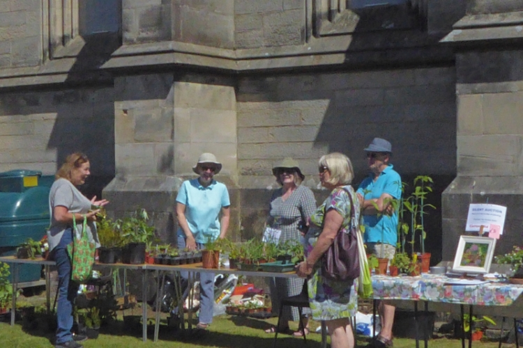 plant stall at fete