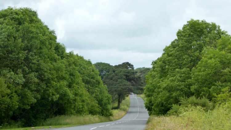 road near KPF