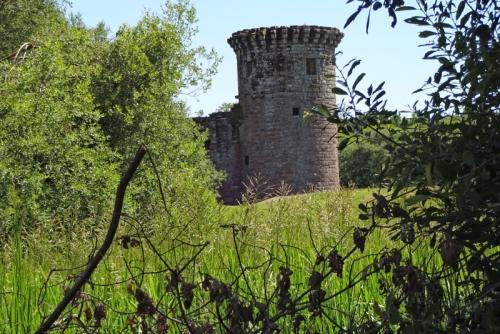 caerlaverock castle Alison