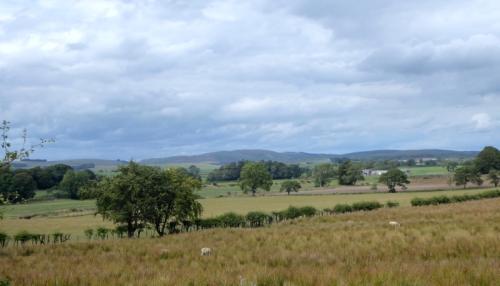 Gair road view