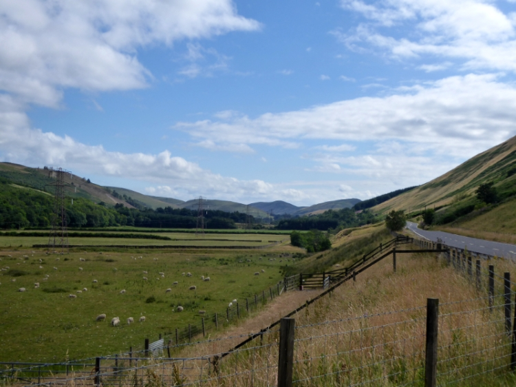 looking down ewes valley