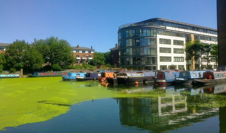 Canal basin, King's Place