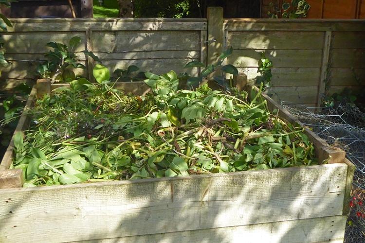 compost bin full of haulms