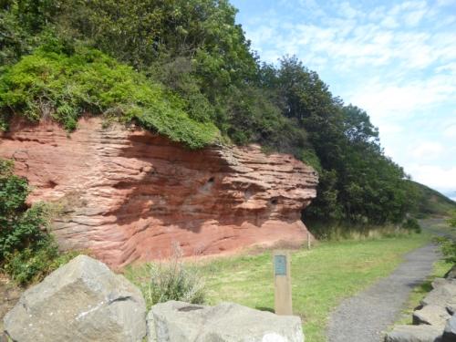 east wemyss sandstone