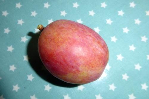 first plum