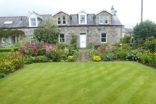 lawn and phlox