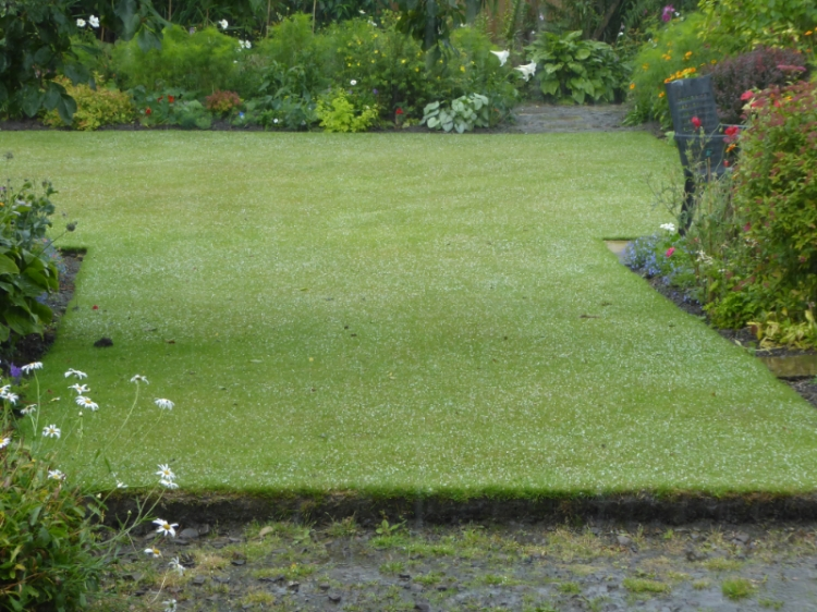 lawn with hail