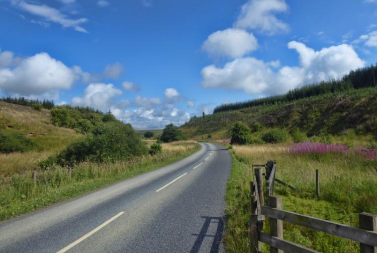 wauchope road no buzzard