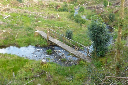 Bridge oberr Becks Burn after felling