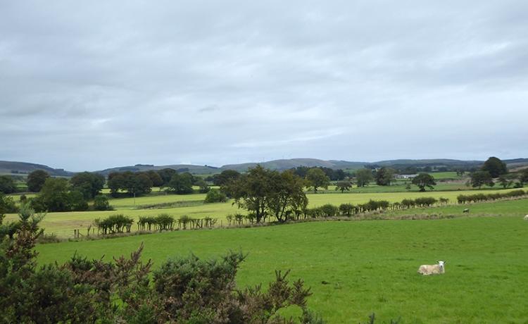 fields near gair