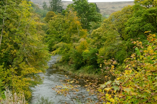 hollows bridge downstream