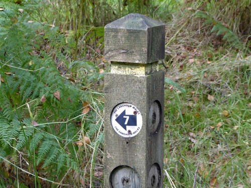 Langholm Walks pole
